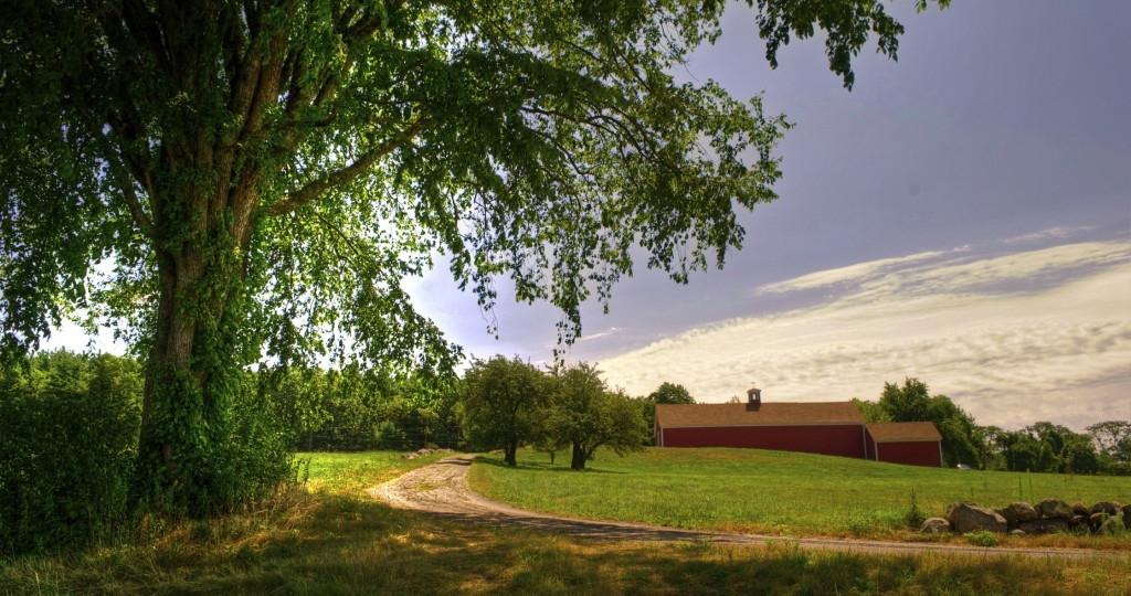 fruitland-landscape-2